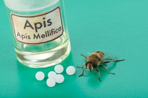 Apis mellifica Homeopathic remedy derived from common honeybee